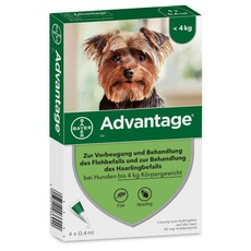 Advantage® 40 (4 Pipetten x 0.4 ml)